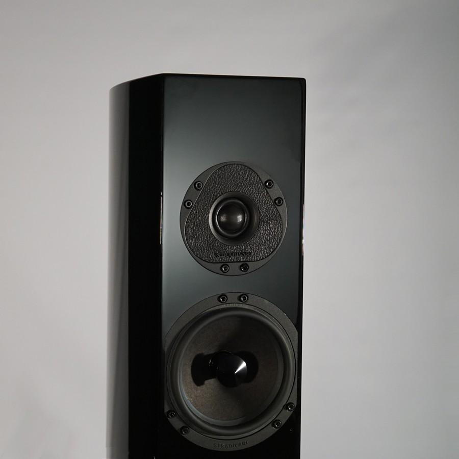 5Stradivari-Pantera-speaker-mid-high